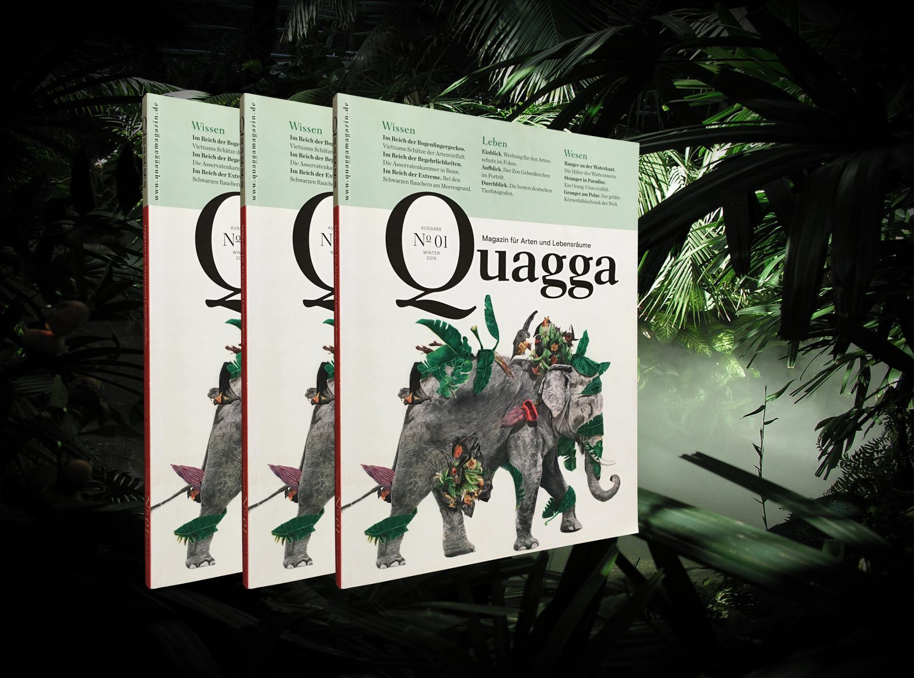 Quagga #1